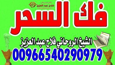 فك السحر الشيخ الروحاني فلاح عبد العزيز 00966540290979